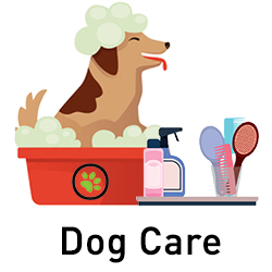 Natural Hygiene Products for Dogs